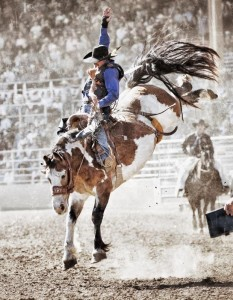 Saddle Bronc - Pendleton Round-Up